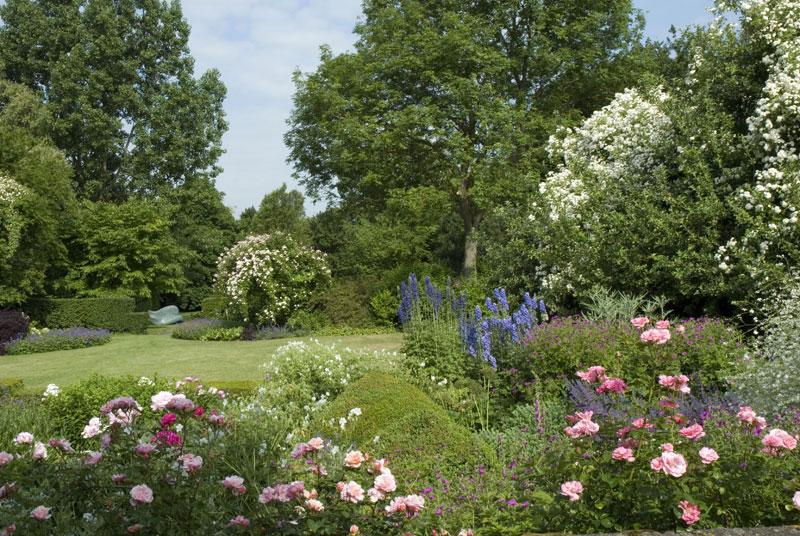 Garden with Magnolia Grandiflora Leaf in the background. (Photograph: Zara Napier)